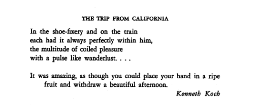 The Trip from CA poem